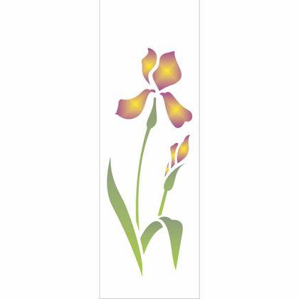 10x30-Simples---Iris---OPA1725---Colorido