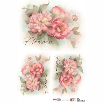 FLOWERS---2400---7898507335571