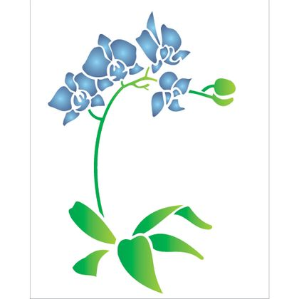 20x25-Simples---Phalaenopsis---OPA1454---Colorido