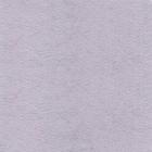 68-lilas-paiva