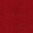 91-vermelho-coleira