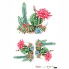 XX_OPAPEL-30X45---Plantas-Cactos-I---7898507338978---2567