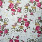bicicleta-com-rosas